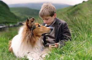 lassie_wideweb__470x311,0